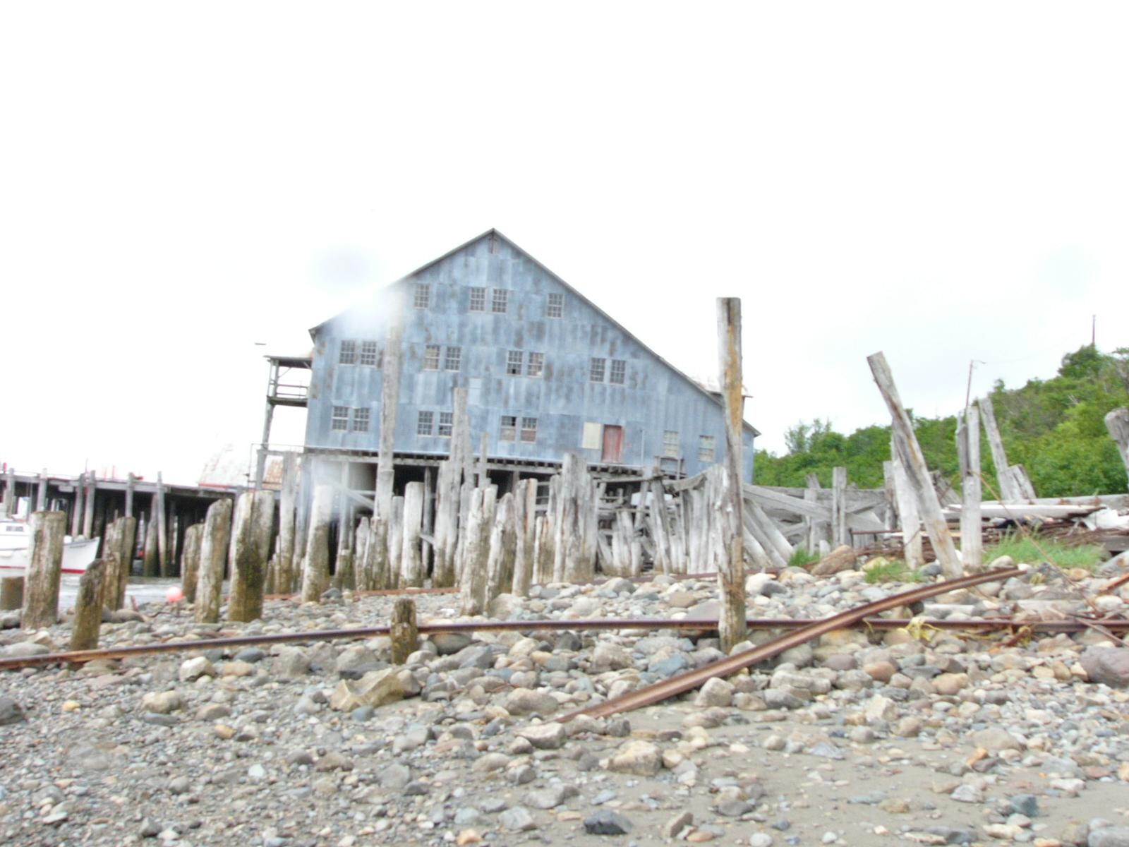 Întâmplări şi poveşti din Alaska: de la urşi, la coaste rupte (I)