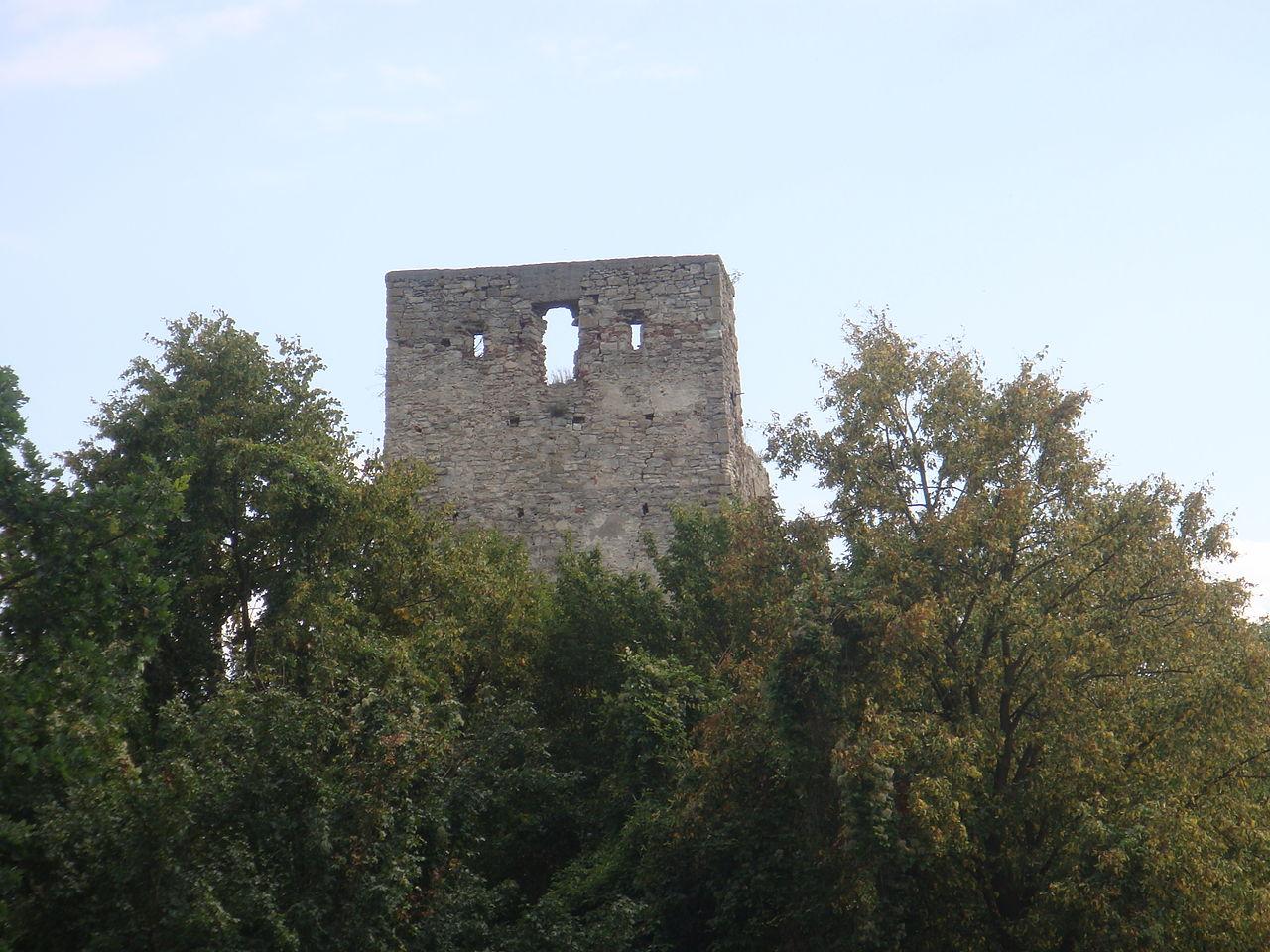 Cetatea Almaşului, o destinaţie pierdută şi abandonată