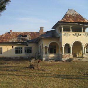 Vila lui Gh. Bratianu de la Ratesti - 2010