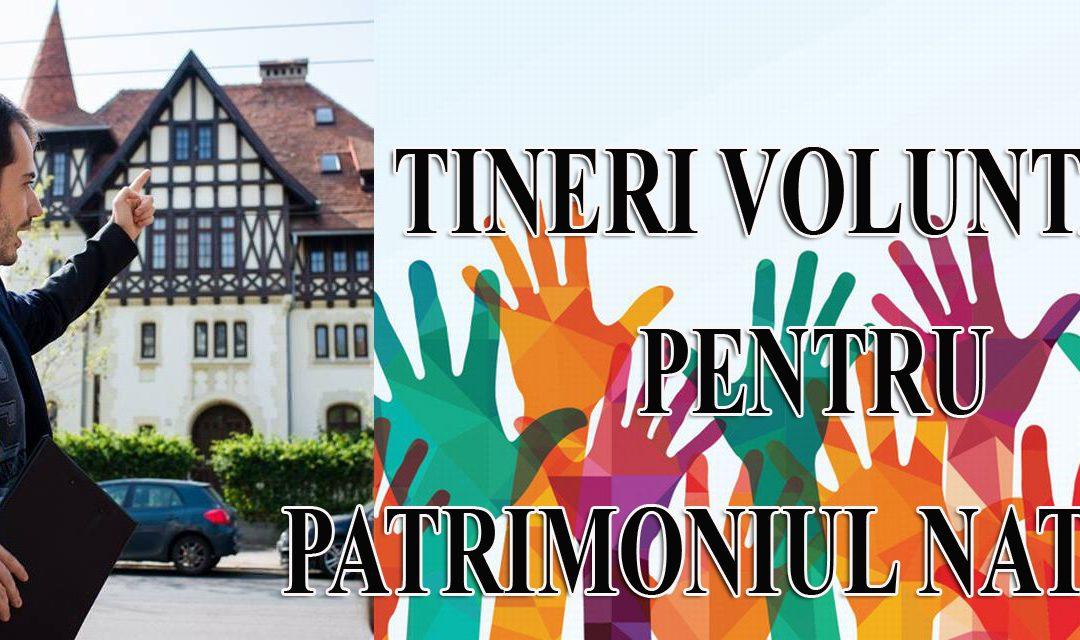 Stagiu de voluntariat: Tineri voluntari pentru patrimoniul românesc