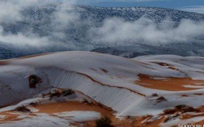 Dunele de nisip ale Saharei, acoperite cu zăpadă VIDEO