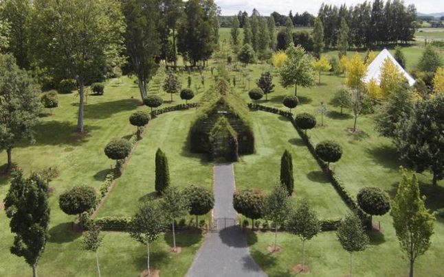 Locul unde credința și natura sunt una, unica biserică din copaci vii