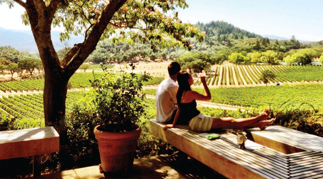 O călătorie fantastică printre vinurile din Napa Valley