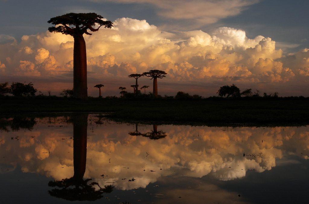 Râul Mangoky – o călătorie în Madagascar