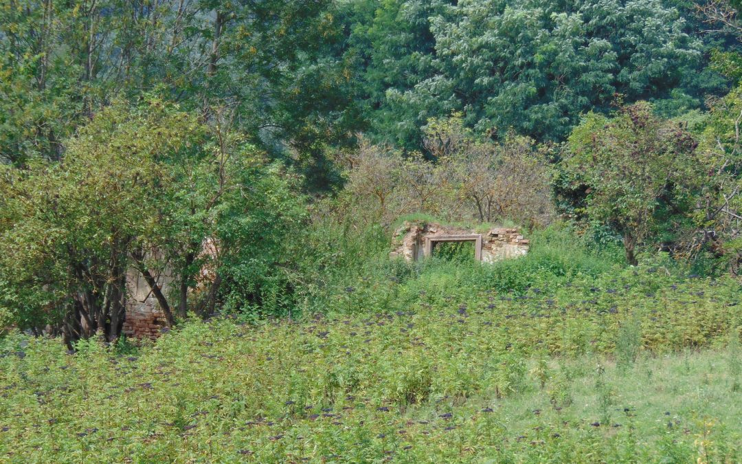 Mighindoala sau Valea Îngerilor – satul părăsit de oameni