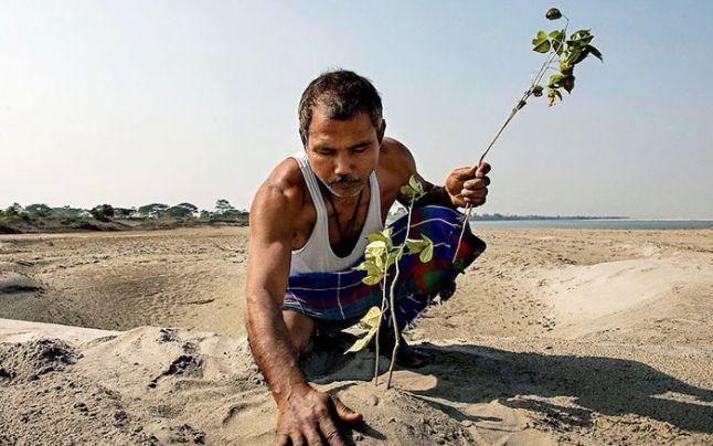 Rezultat spectaculos după ce un bărbat a plantat câte un copac pe zi, timp de 40 de ani