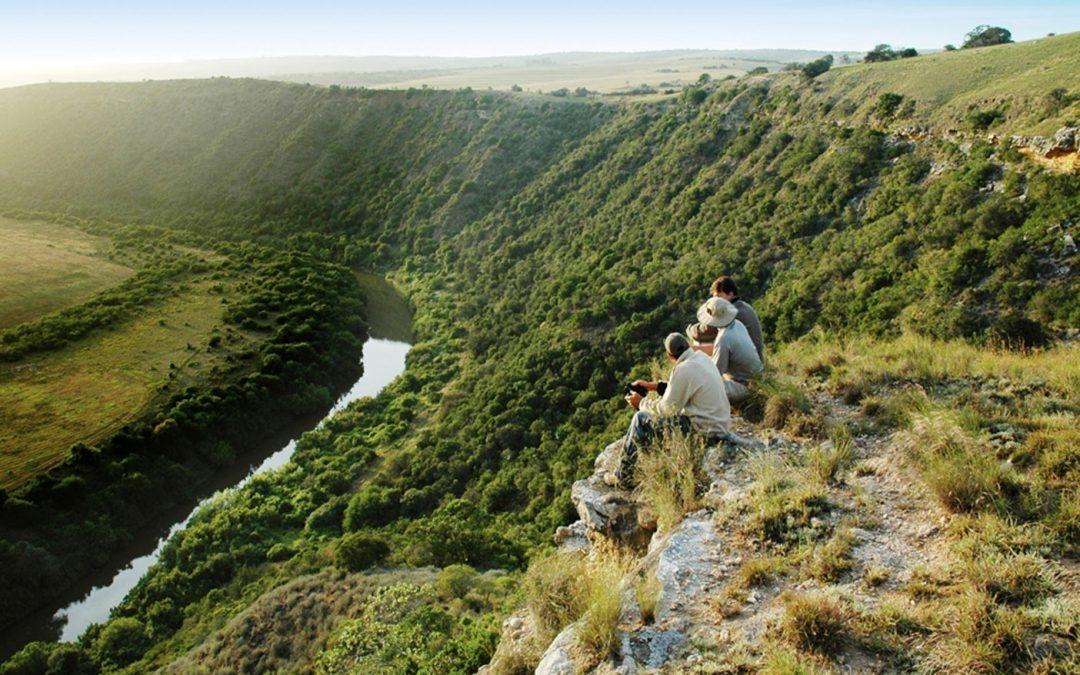 Traseul Grădinilor din Africa de sud – Plaje albe, faleze abrupte, păduri seculare și peisaje montane