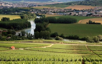 Un tur prin Champagne – printre podgoriile celui mai cunoscut vin spumant