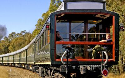 Safari în sălbăticie din tren