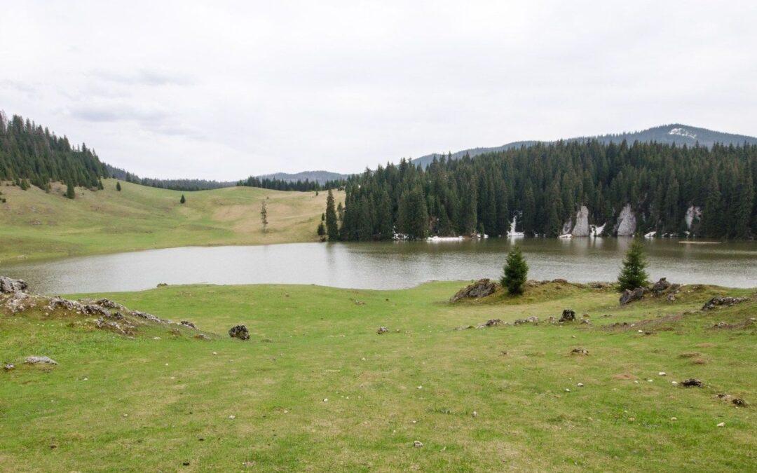 Poiana Ponor – unica polie din România și misterul apelor care apar și dispar