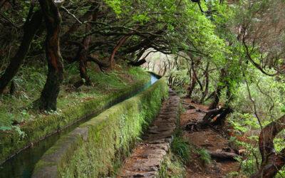 Levada în Madeira – un loc aparte