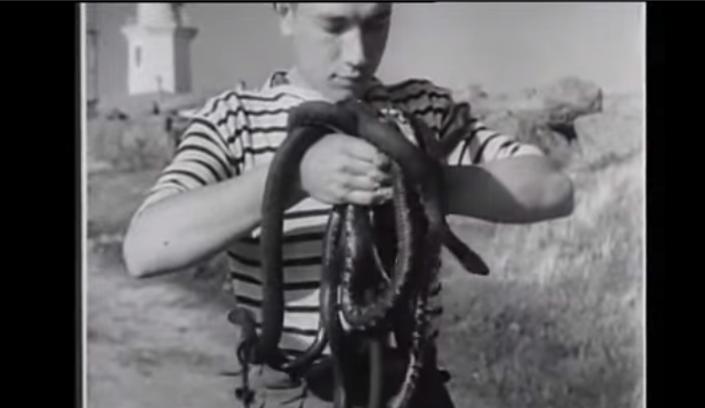 Cum arăta Insula Şerpilor în anii '40. Imagini filmate în vremea când era pământ românesc