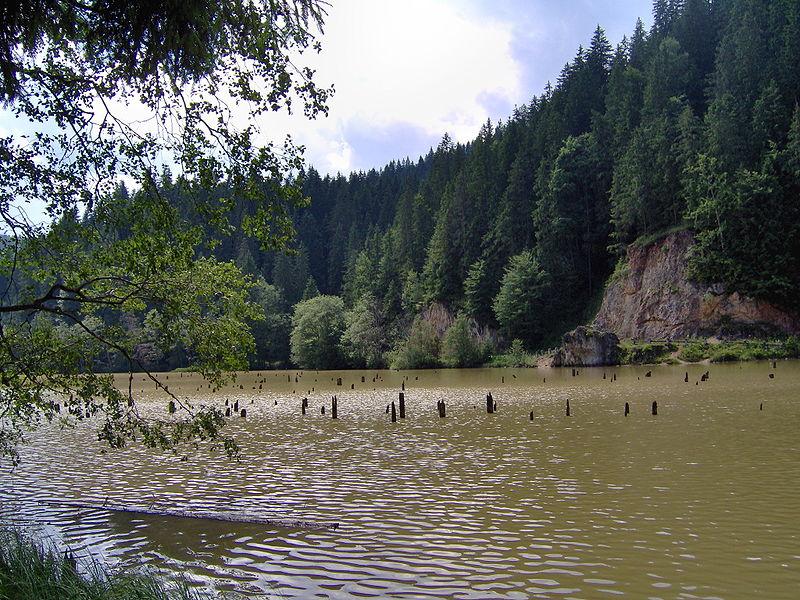 """De unde vine numele Lacului Roșu? Singurul loc din România în care s-a """"scufundat"""" o pădure!"""