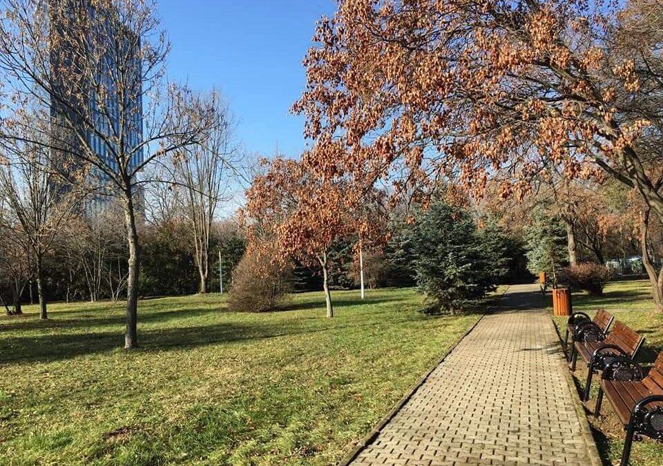 Un nou parc, deschis în Bucureşti. Unde e situat Parcul Elisabeta Rizea și incertitudinile din jurul statului său?