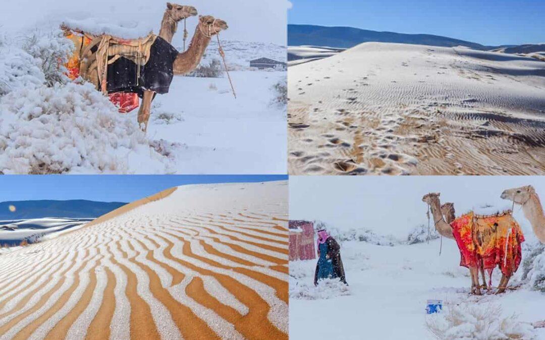 Fenomen extrem de rar: Deşertul Sahara a fost acoperit de zăpadă