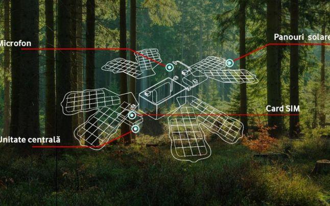 Prima pădure inteligentă din România pentru a preveni defrişările ilegale