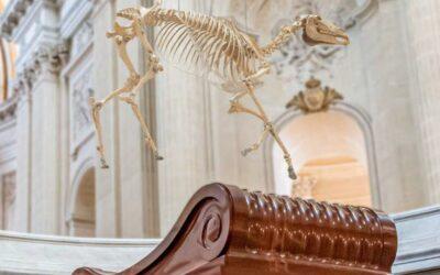«Grotesc şi şocant»- o reproducere a scheletului calului preferat de Napoleon, montată deasupra mormântului său