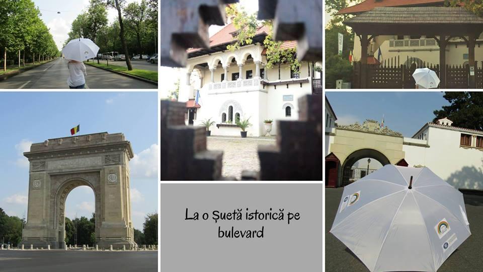 Întrebări și răspunsuri despre Stagiul de Voluntariat pentru Patrimoniu